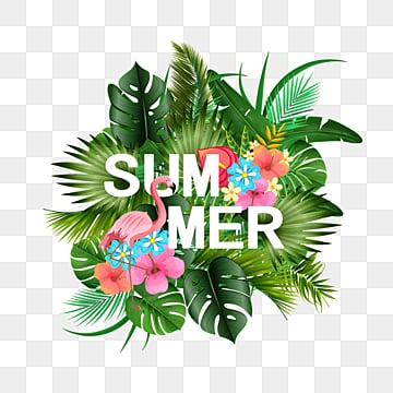 summer tropical plant border, Summer, Summertime, Summer Rim PNG and PSD