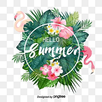 Summer Tropical Plants Flamingo Border Material, Summertime, Summer Rim, Flamingo PNG and PSD