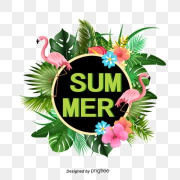 Tropical plant Flamingo border, Summer, Summertime, Summer Rim PNG and PSD