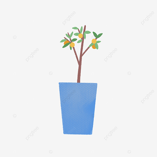 Lemon Tree Drawing Images
