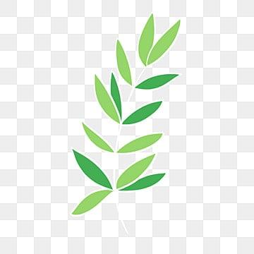 Dessin De Feuilles Vertes Png Vecteurs Psd Et Icones Pour