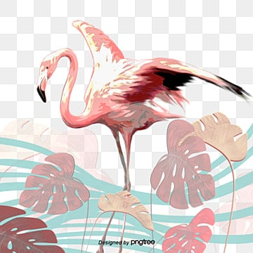 Flamingo Flower Elements, Leaf, Summertime, Hand Painted PNG and PSD