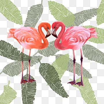 Flamingo plant hand painted elements, Leaf, Summertime, Hand Painted PNG and PSD