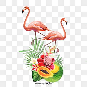 fruit flamingo handpainted plant elements, Leaf, Summertime, Papaya PNG and PSD