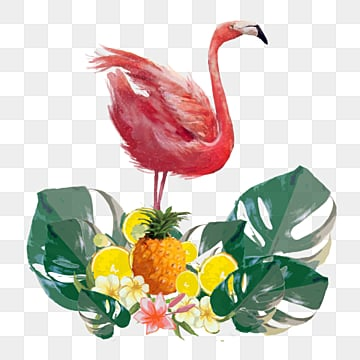 Hand painted Flamingo Elements in Plant and Fruit, Leaf, Summertime, Hand Painted PNG and PSD