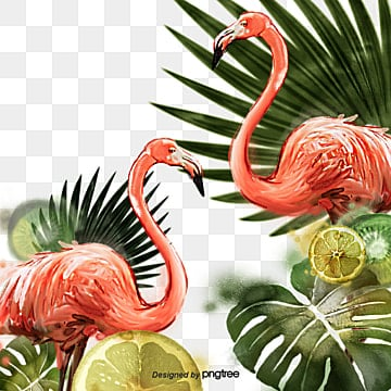 Hand painted Flamingo Lemon Green Leaf Elements, Leaf, Summertime, Hand Painted PNG and PSD