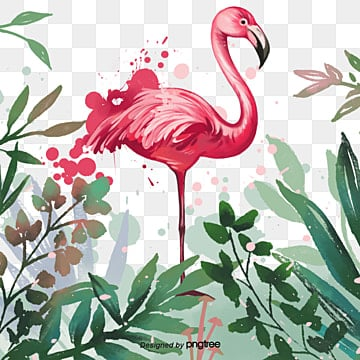 Splatter flamingo hand drawn floral botanical elements, Leaf, Spatter, Summertime PNG and PSD