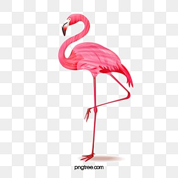 pink flamingo hand painted elements, Creative, Cartoon, Summer PNG and PSD