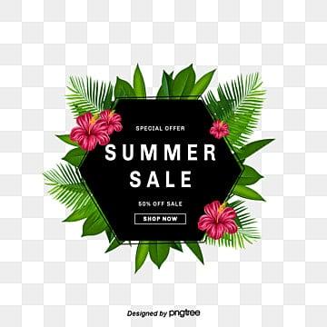 พืชเขตร้อน, ฤดูร้อน, ขอบฤดูร้อน, พืช PNG และ PSD