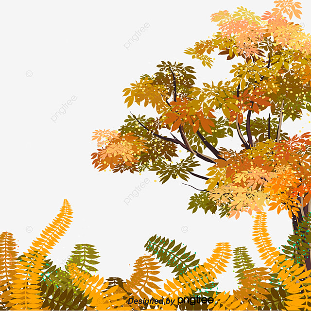 Plants Trees And Leaves In Autumn, Leaf, Tree, Plant PNG
