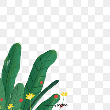 Bush, Bush Vector, Thicket PNG and Vector with Transparent