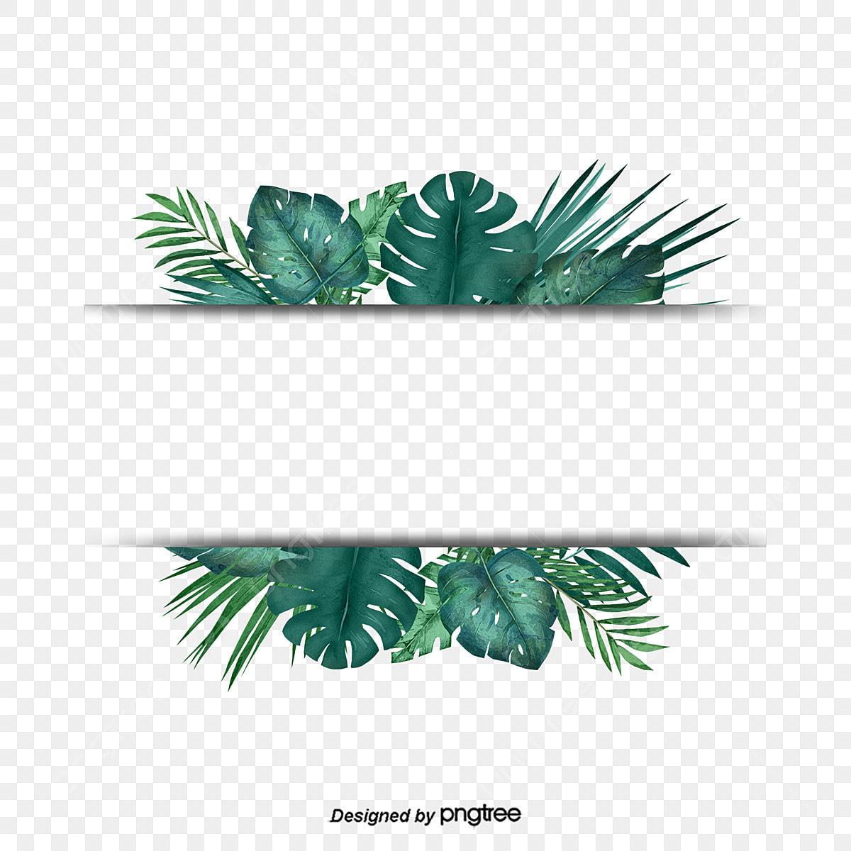 Green Tropical Plant Palm Leaf Border Border Clipart Palm Leaf Botany Png Transparent Clipart Image And Psd File For Free Download Blue tropical leaves background png image. https pngtree com freepng green tropical plant palm leaf border 3791397 html