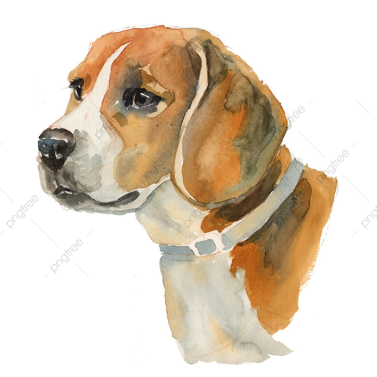Christmas Beagle Clipart.Beagle Animal Png Transparent Clipart Image And Psd File