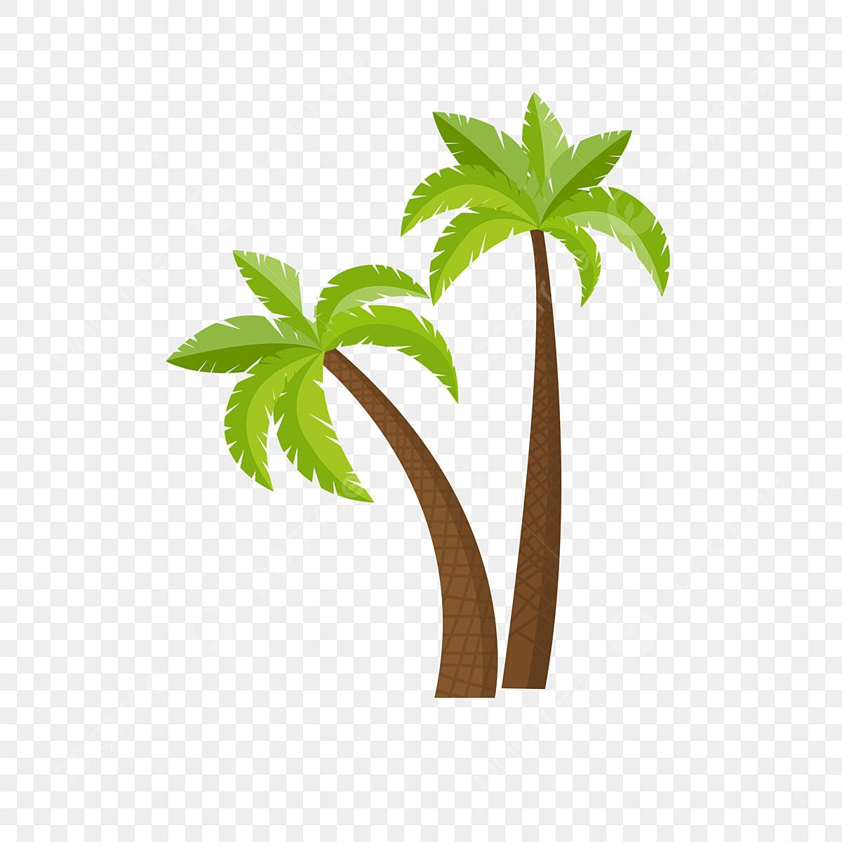Elements De Clipart De Palmiers Tropicaux Cocotier Arbre Clipart Dessin Anime Arbre Fichier Png Et Psd Pour Le Telechargement Libre