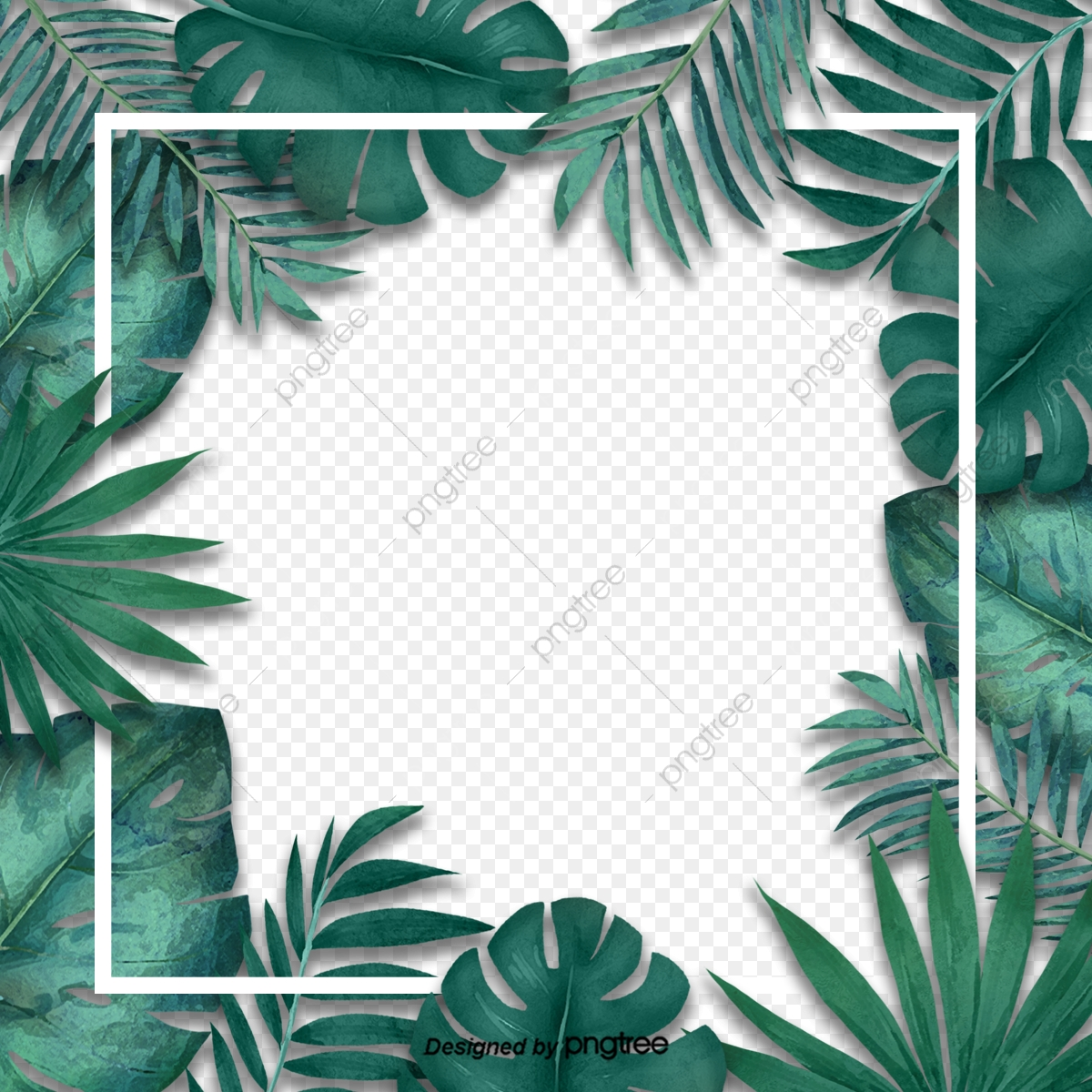 Simple Fresh Tropical Palm Leaf Border Originality Leaf Palm Leaf Border Png Transparent Clipart Image And Psd File For Free Download Pikbest has 3796 tropical leaves design images templates for free. https pngtree com freepng simple fresh tropical palm leaf border 3787332 html