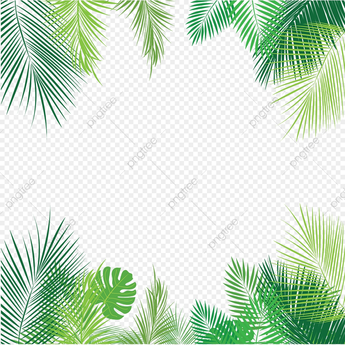 Tropical Palm Leaves Png Png Free Download Palm Tropical Leaves Leaves Png And Vector With Transparent Background For Free Download Search and find more on vippng. https pngtree com freepng tropical palm leaves png png free download 3553609 html