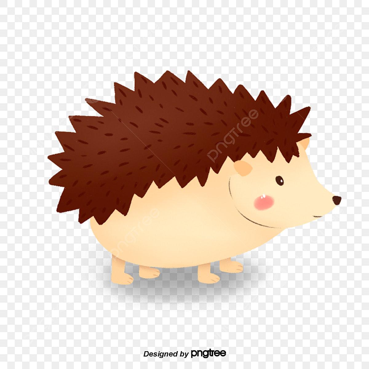 Un Joli Petit Herisson Clipart Herisson Herisson Animal Fichier Png Et Psd Pour Le Telechargement Libre