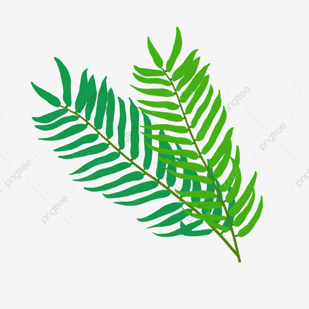 Botanical Elements Hand Drawn Tropical Green Leaves Plant Element Plant Leaf Png Transparent Clipart Image And Psd File For Free Download Free for commercial use no attribution required high quality images. https pngtree com freepng botanical elements hand drawn tropical green leaves 4063122 html