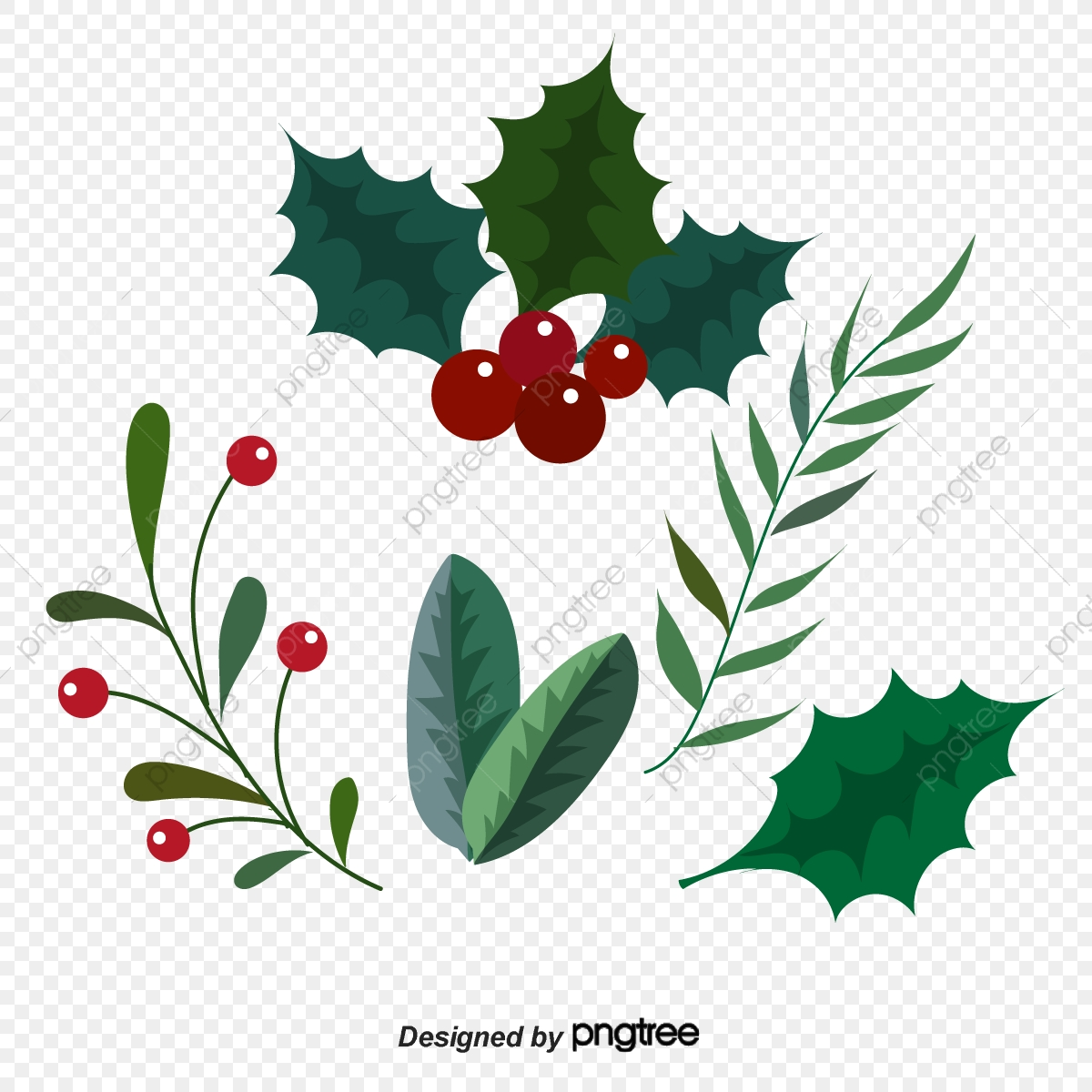 Christmas Leaves.Christmas Plant Leaves Lovely Leaf Christmas Png And