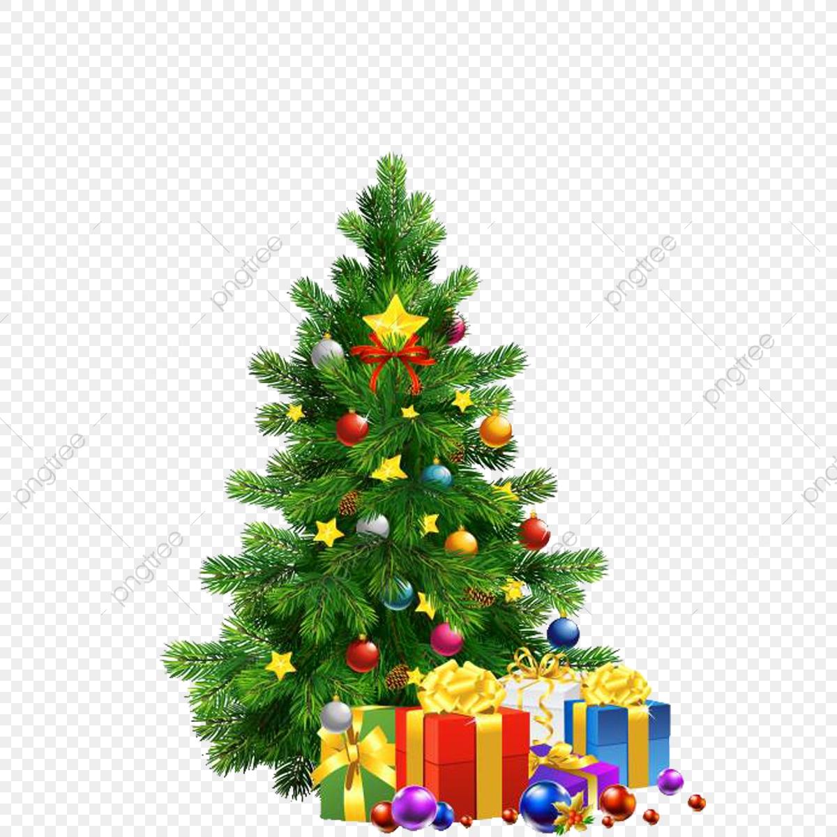 árvore De Natal Png Noel Cristo Arquivo Png E Psd Para