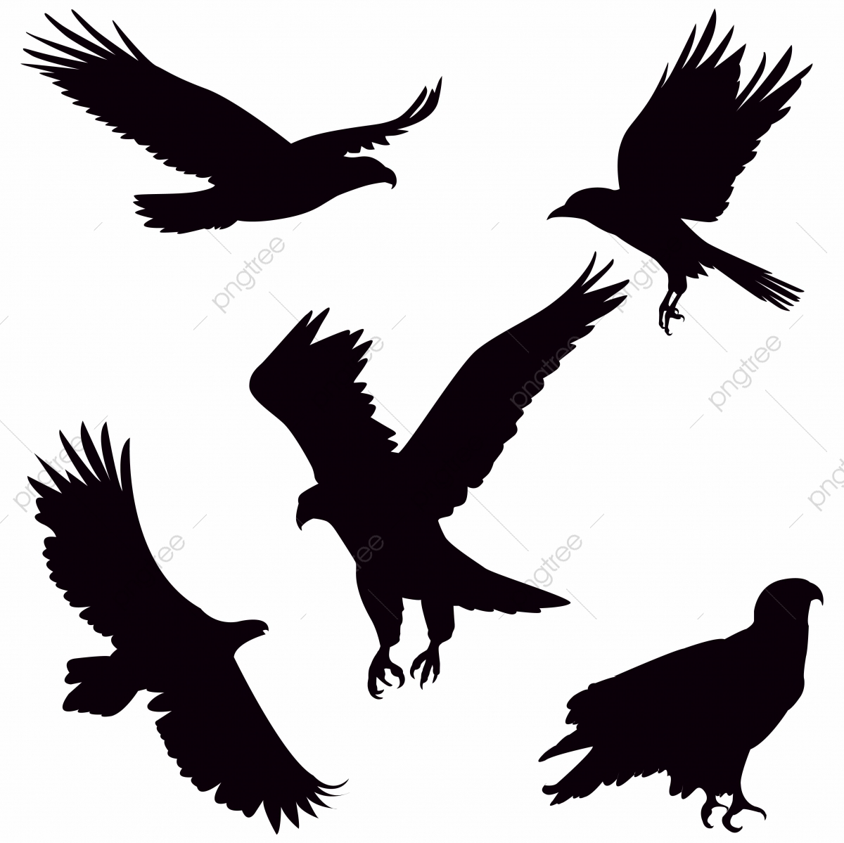 Eagle Silhouette On White Background Isolated Freedom Animal Png And Vector With Transparent Background For Free Download Eagle silhouette 001 stock vector. https pngtree com freepng eagle silhouette on white background 4150285 html