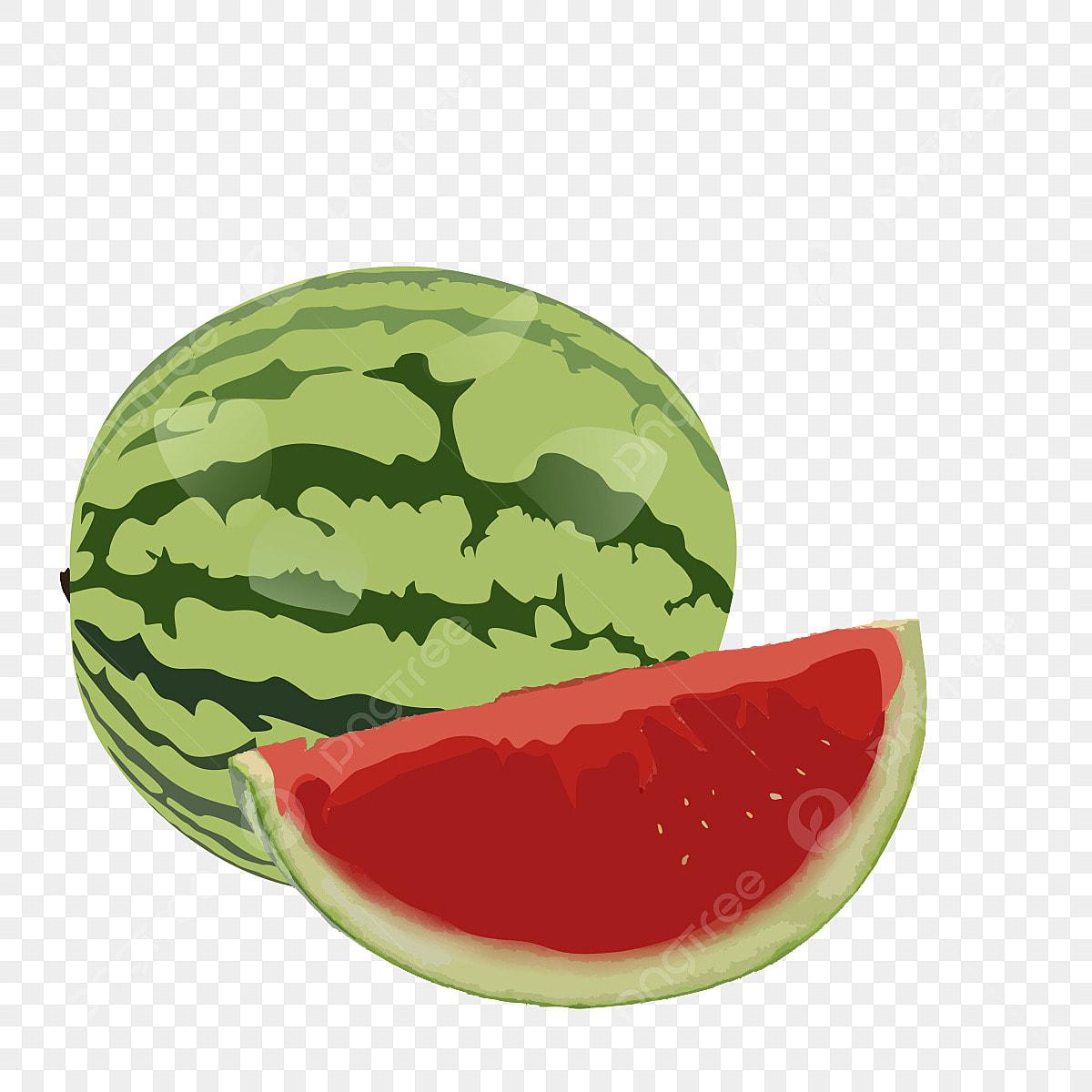 Frutas Desenho Clipart Melancia Frutos Logo Clipart Clipart
