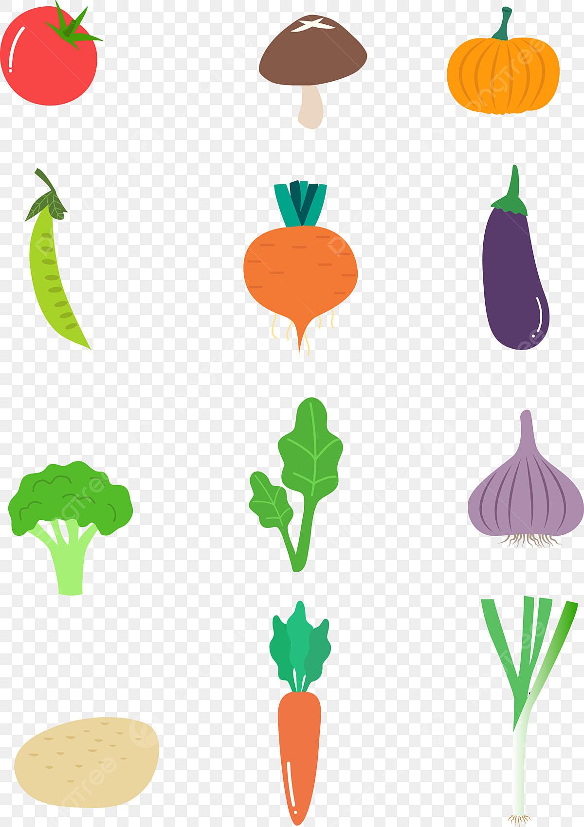 Matériel De Dessin Animé Légumes Cuisine Fruits Caricature