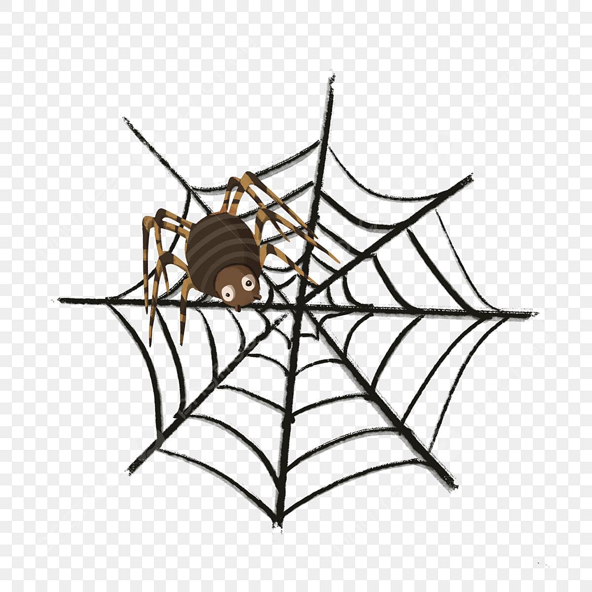 Halloween Thème Toile Daraignée Araignée Dessin Animé