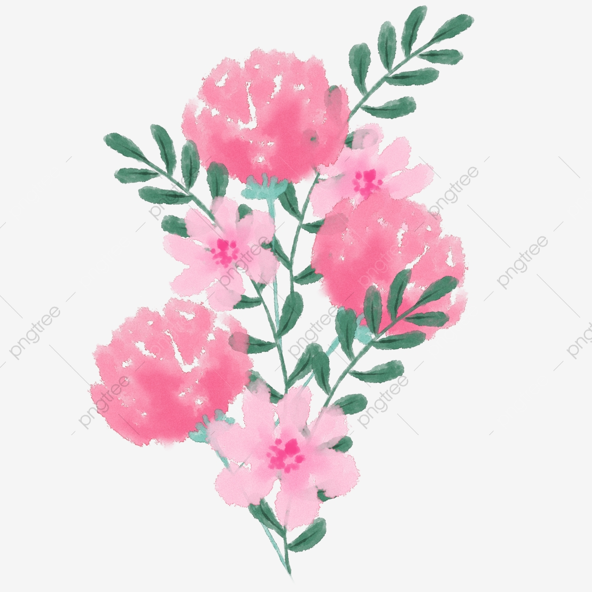 Hand Painted Watercolor Carnation Cartoon Watercolor Pink ...