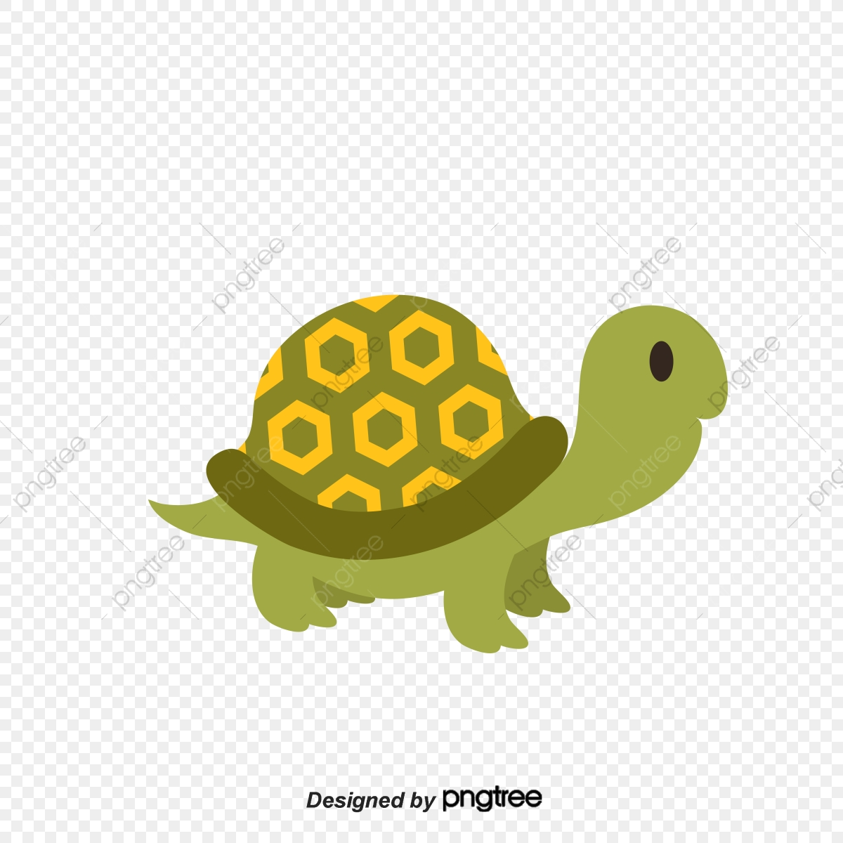 Lovely Big Turtle Shell Lovely Crawling Turtle Tortoise Animal