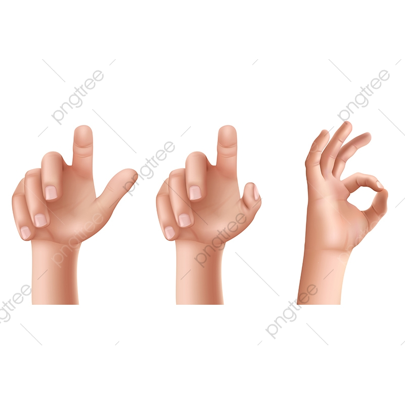 Female Hand Png Vector Psd And Clipart With Transparent Background For Free Download Pngtree If you like, you can download pictures in icon format or directly in. https pngtree com freepng male or female hands with raised index finger and gesture ok 3568340 html