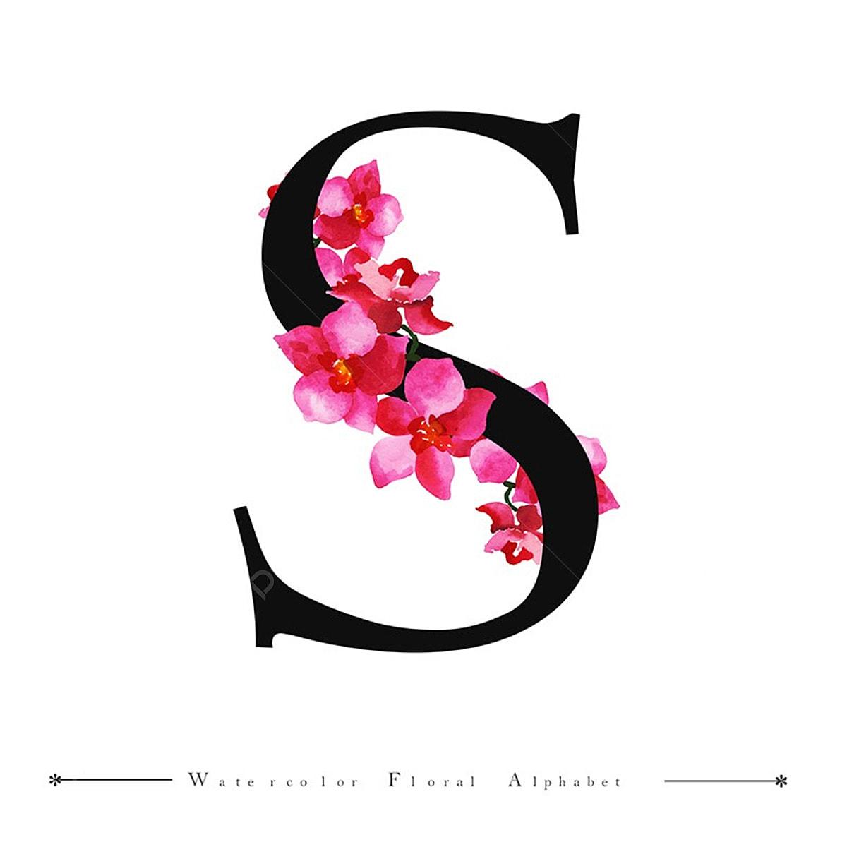 S Lettre De L'alphabet Aquarelle Fond Floral, Peinture, Couleur, Peints PNG  et vecteur pour téléchargement gratuit