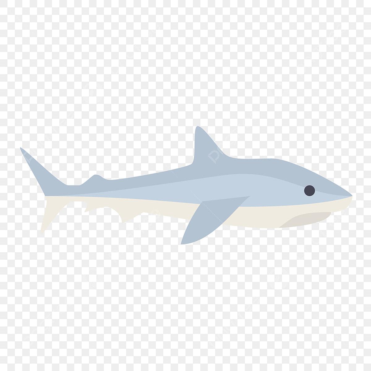 Gambar Lukisan Ikan Jerung