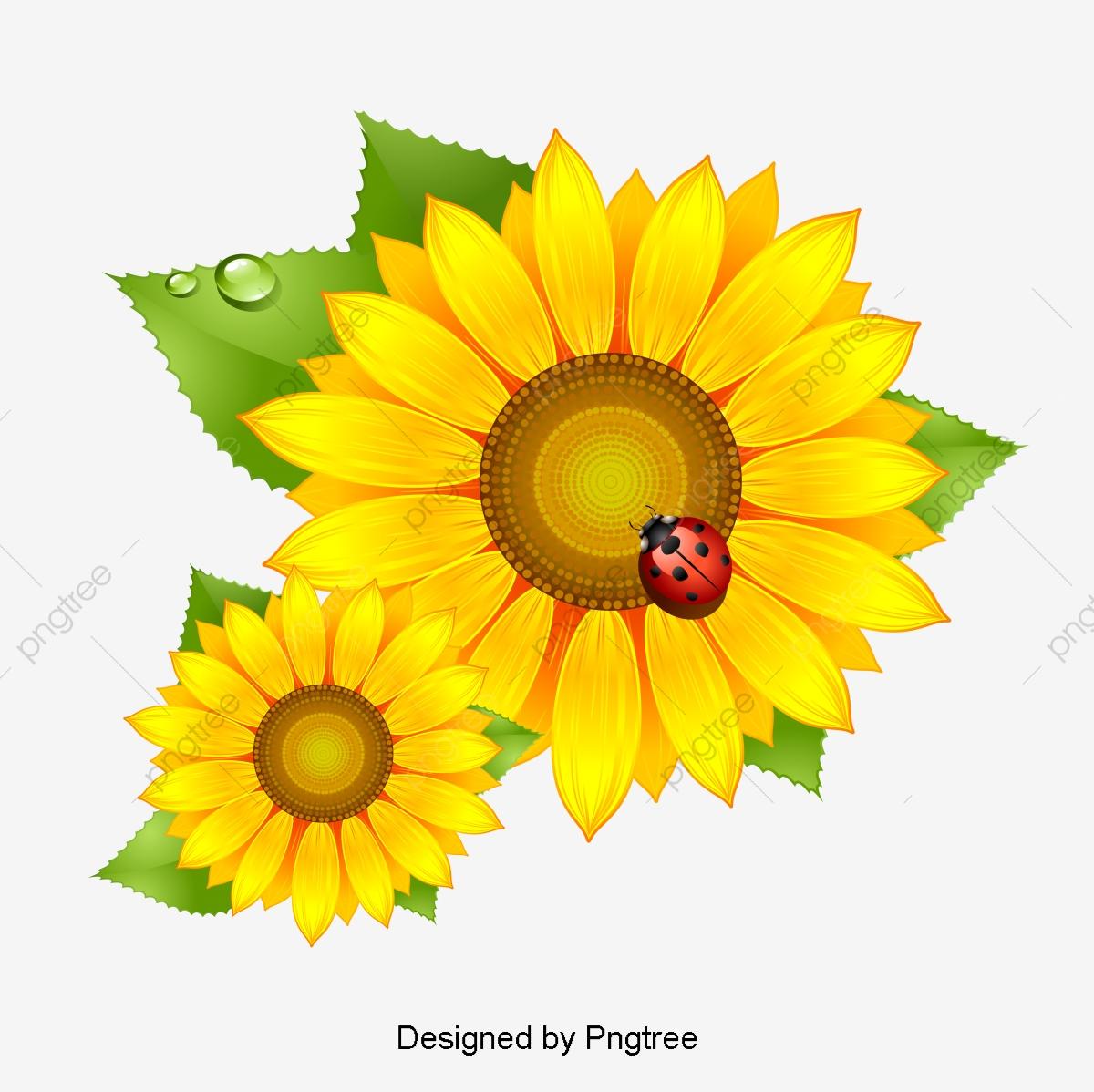 Simples Elementos Florais Pintados A Mao Dos Desenhos Animados Do