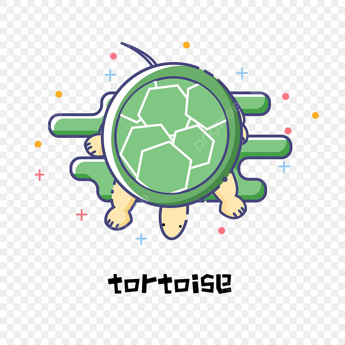 Simple Cute Cartoon Animal Turtle Tortoise Animal Cute Turtle