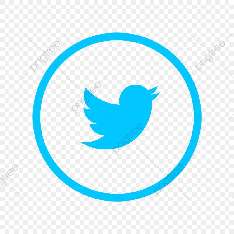 Twitter Logo Icon Twitter Icon Twitter Vector Twitter Logo Png