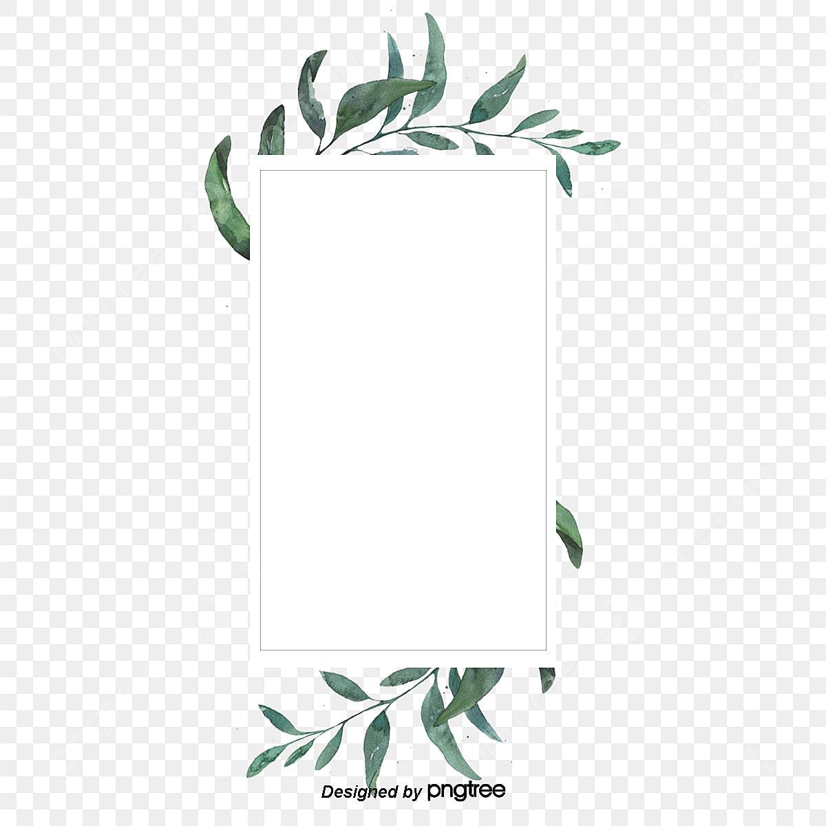 Watercolor Border Of Green Eucalyptus Leaves, Rectangle Clipart ...