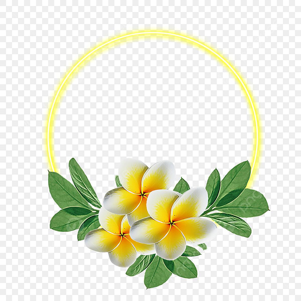 Fiori Gialli Png.Acquarello Fiore Fiori Gialli Round Png Contesto Astratto Arte