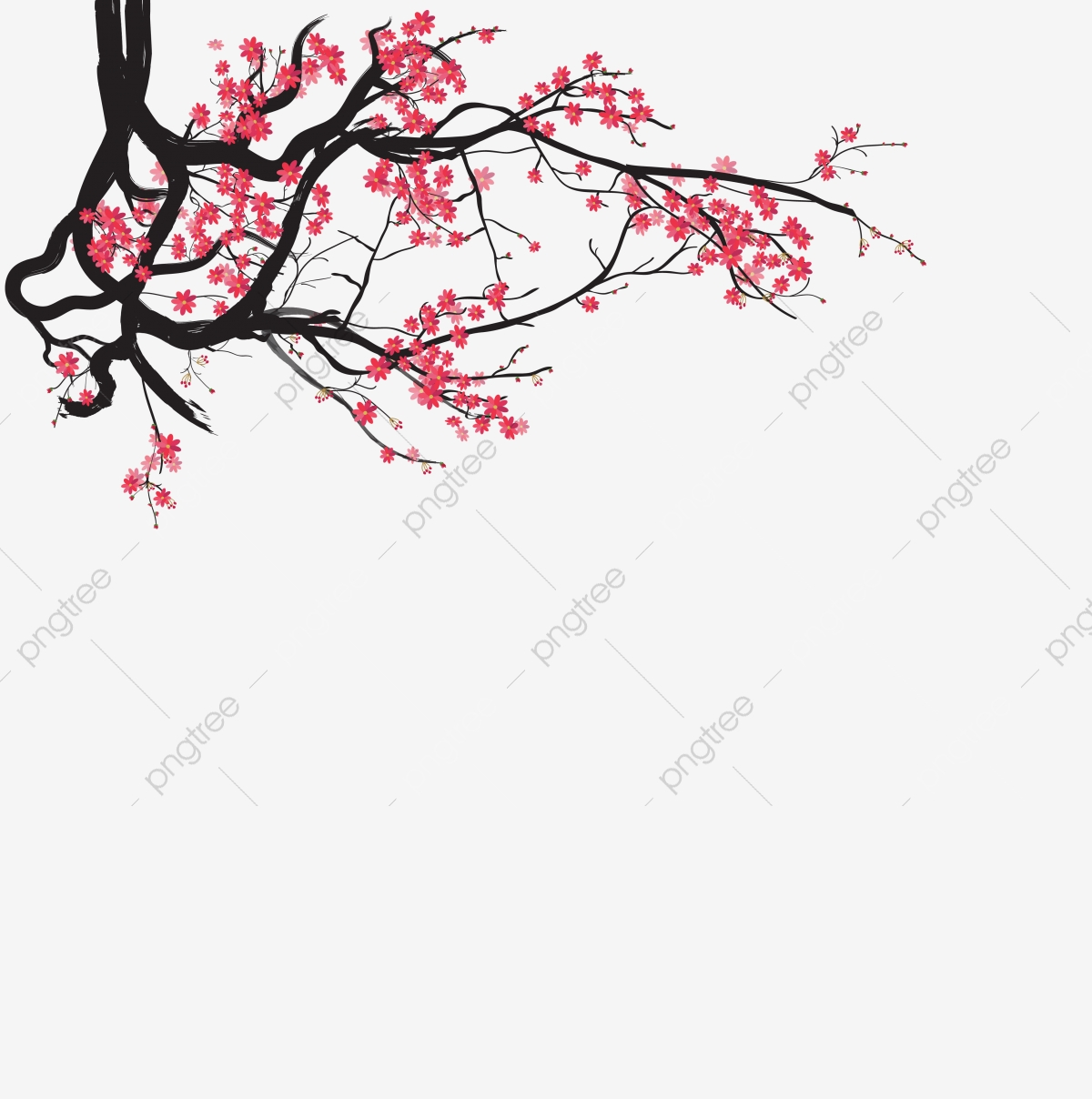 Watercolor Sakura Frame Background With Blossom Cherry Tree