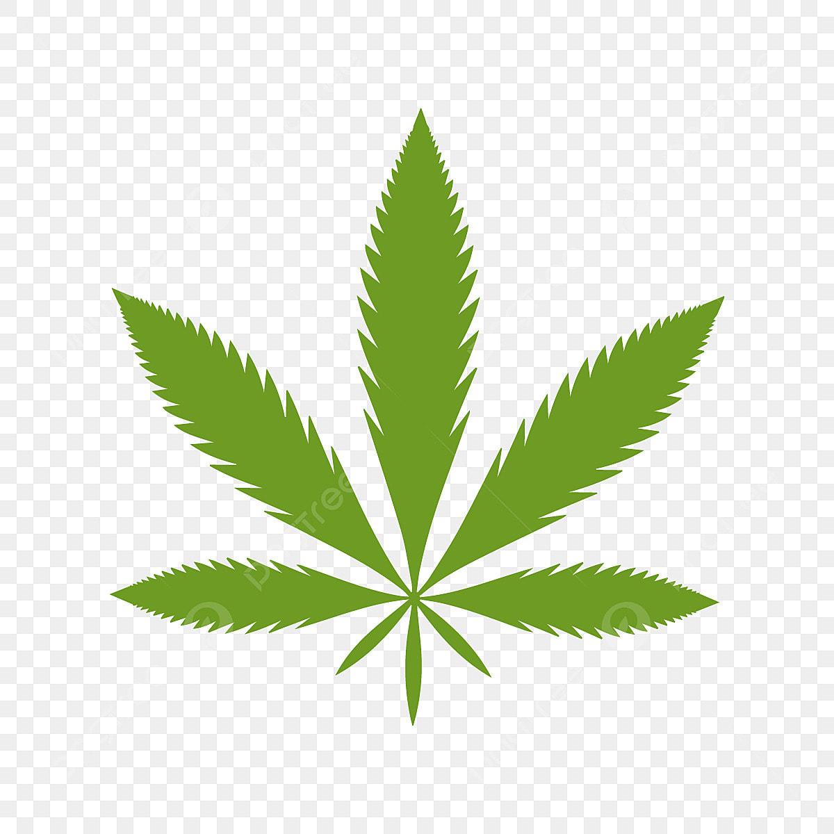 Скачать mp3 марихуана свитшот с марихуаной украина