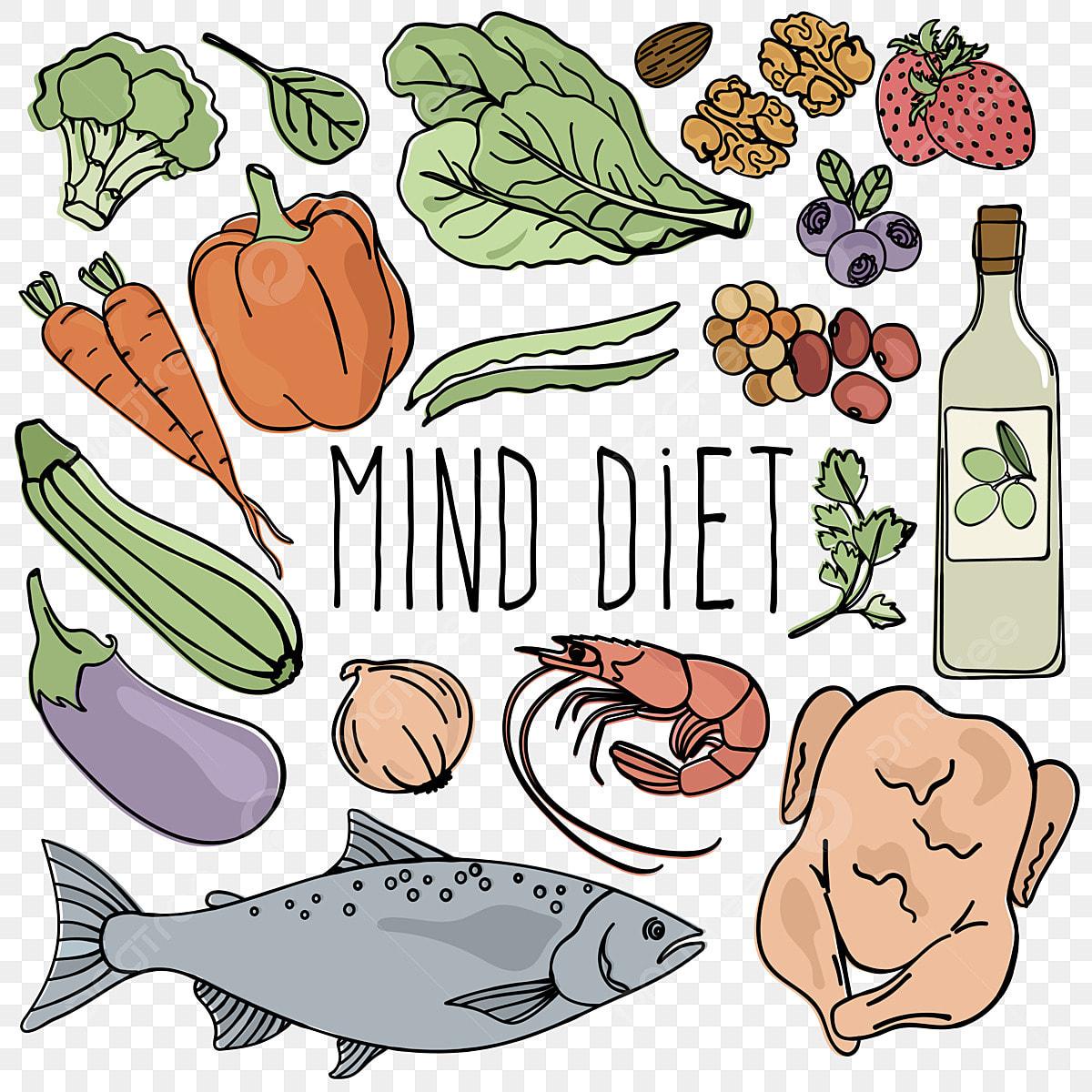 Fikiran Diet Makanan Yang Sihat Otak Makanan Organik Betul Vektor