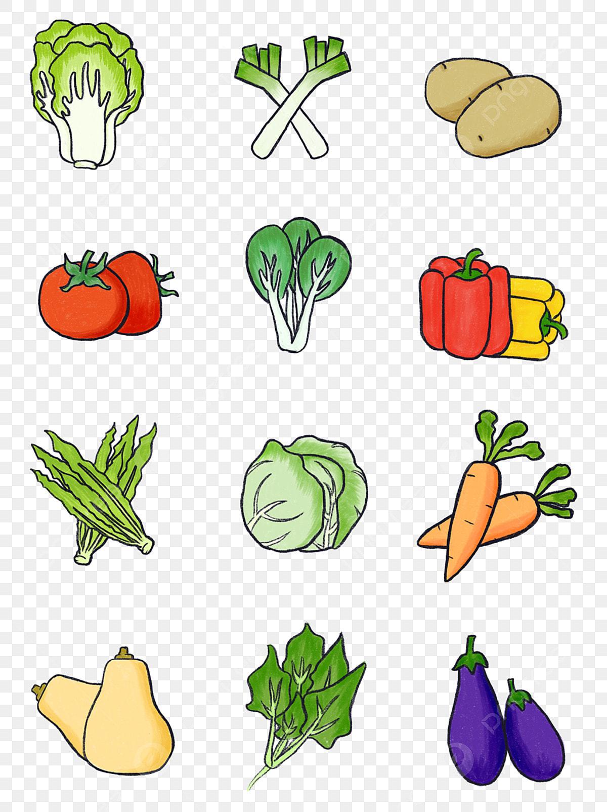 Dessin Animé De Légumes Et Melons Colorés Peints à La Main