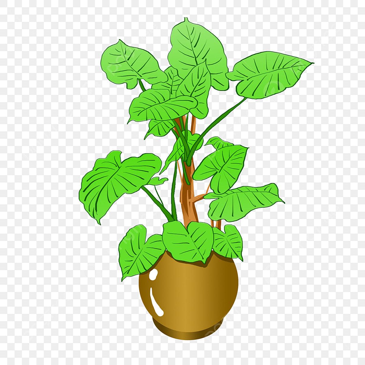 Plante En Pot De Dessin Animé Décor à La Maison Paysage