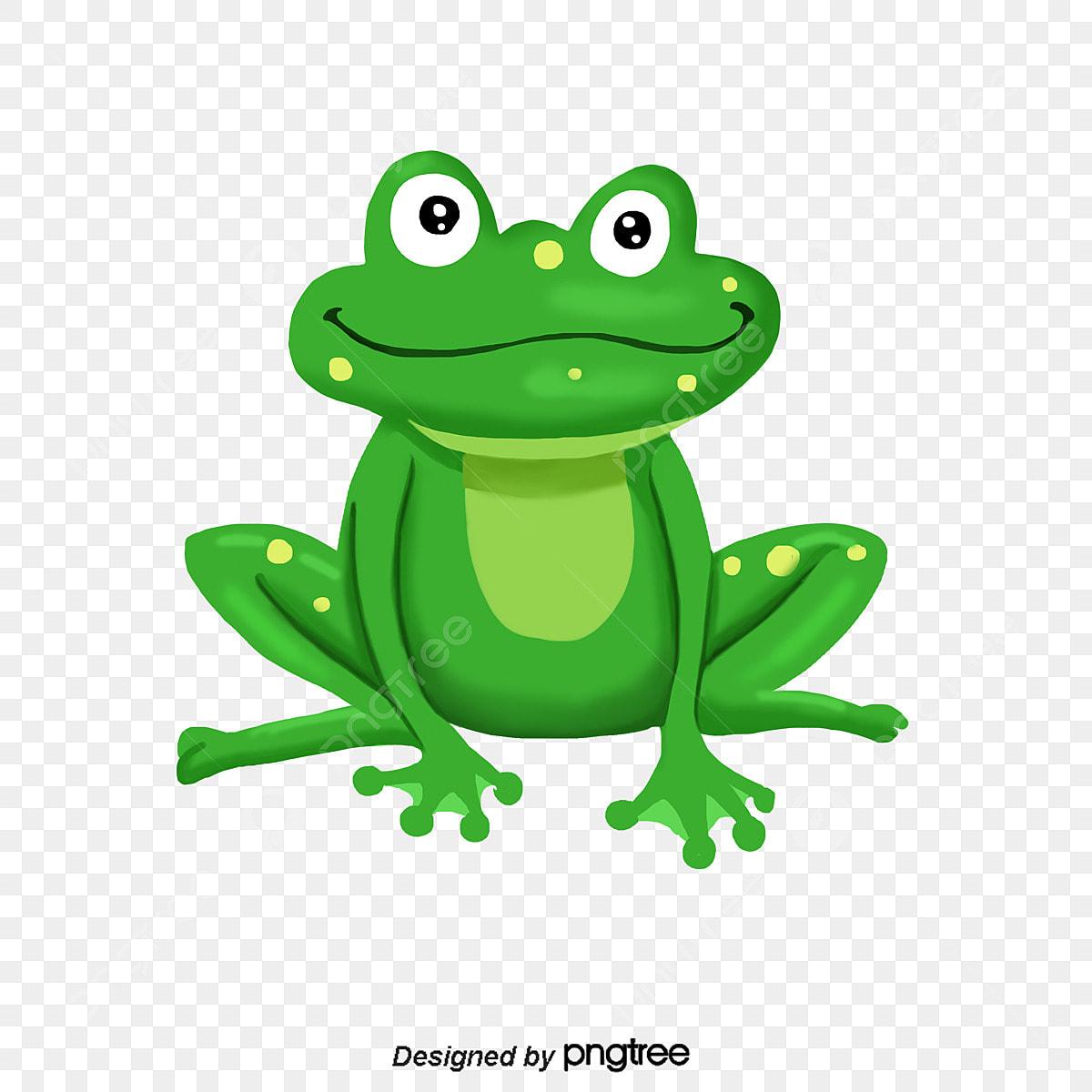 Sapo Verde Dos Desenhos Animados Cartoon Sapo Dos Desenhos