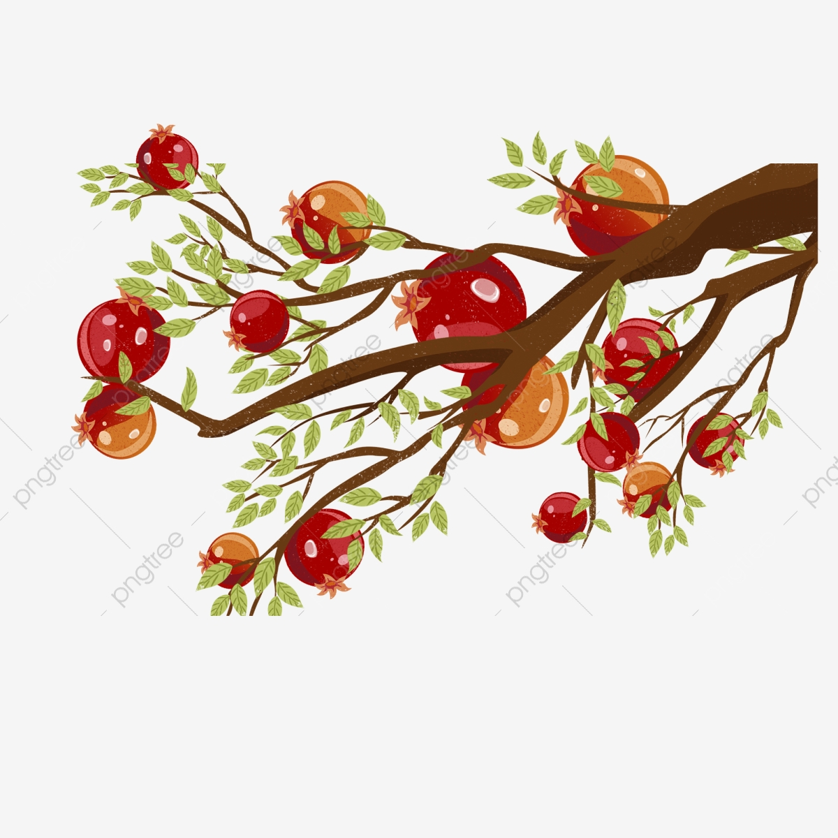 Pomegranate Tree Png Images Vector And Psd Files Free Download On Pngtree