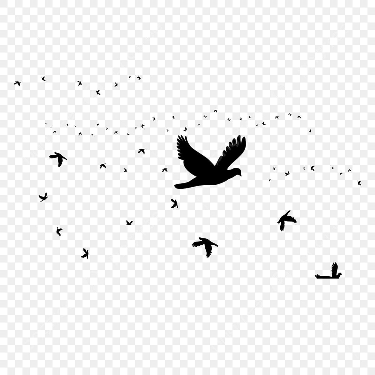 fresh black bird decorative element  flying bird  animal  little bird png transparent clipart