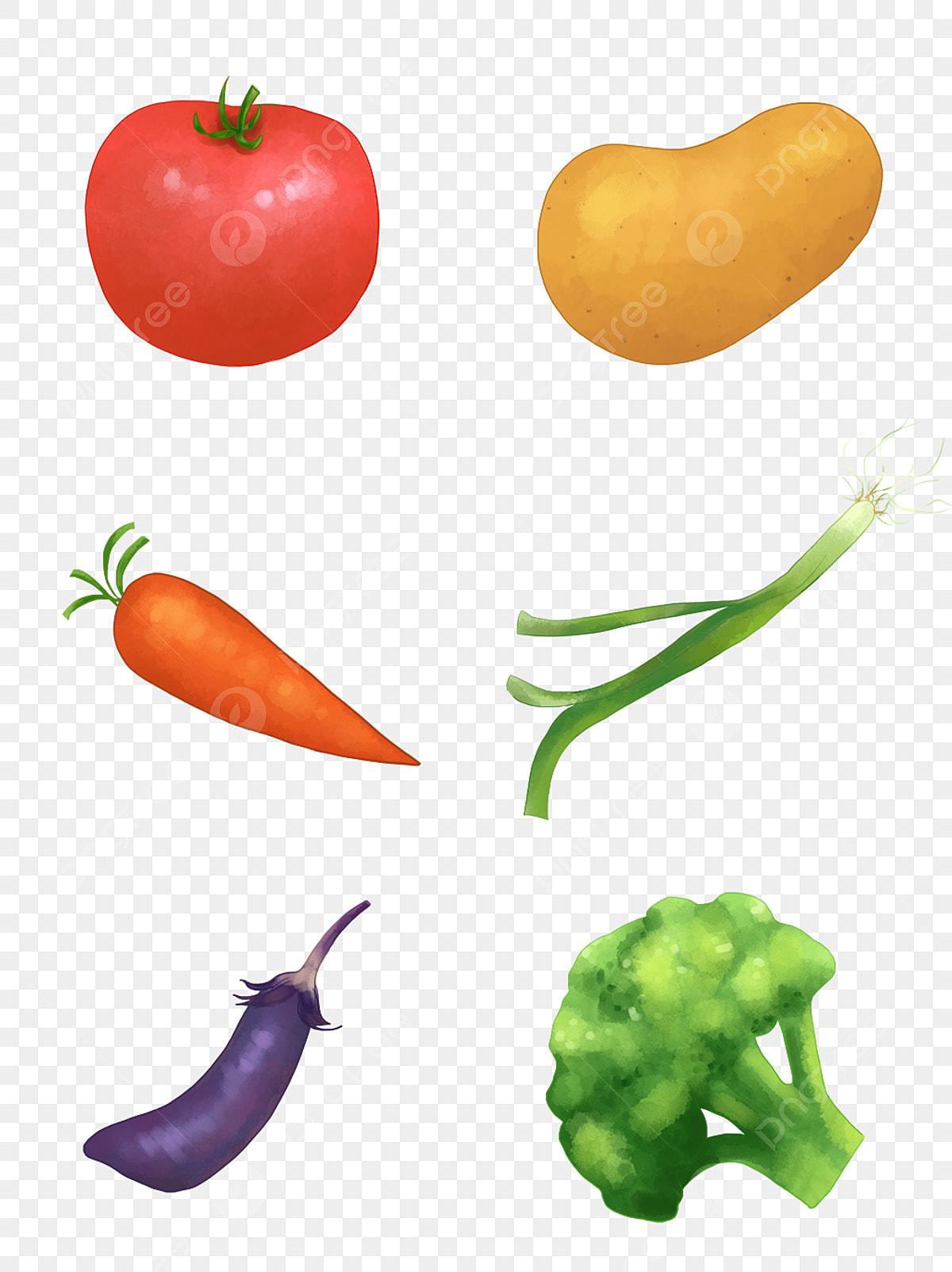 果物と野菜のセットイラスト手描き野菜果物シンプルな野菜の要素 手描き