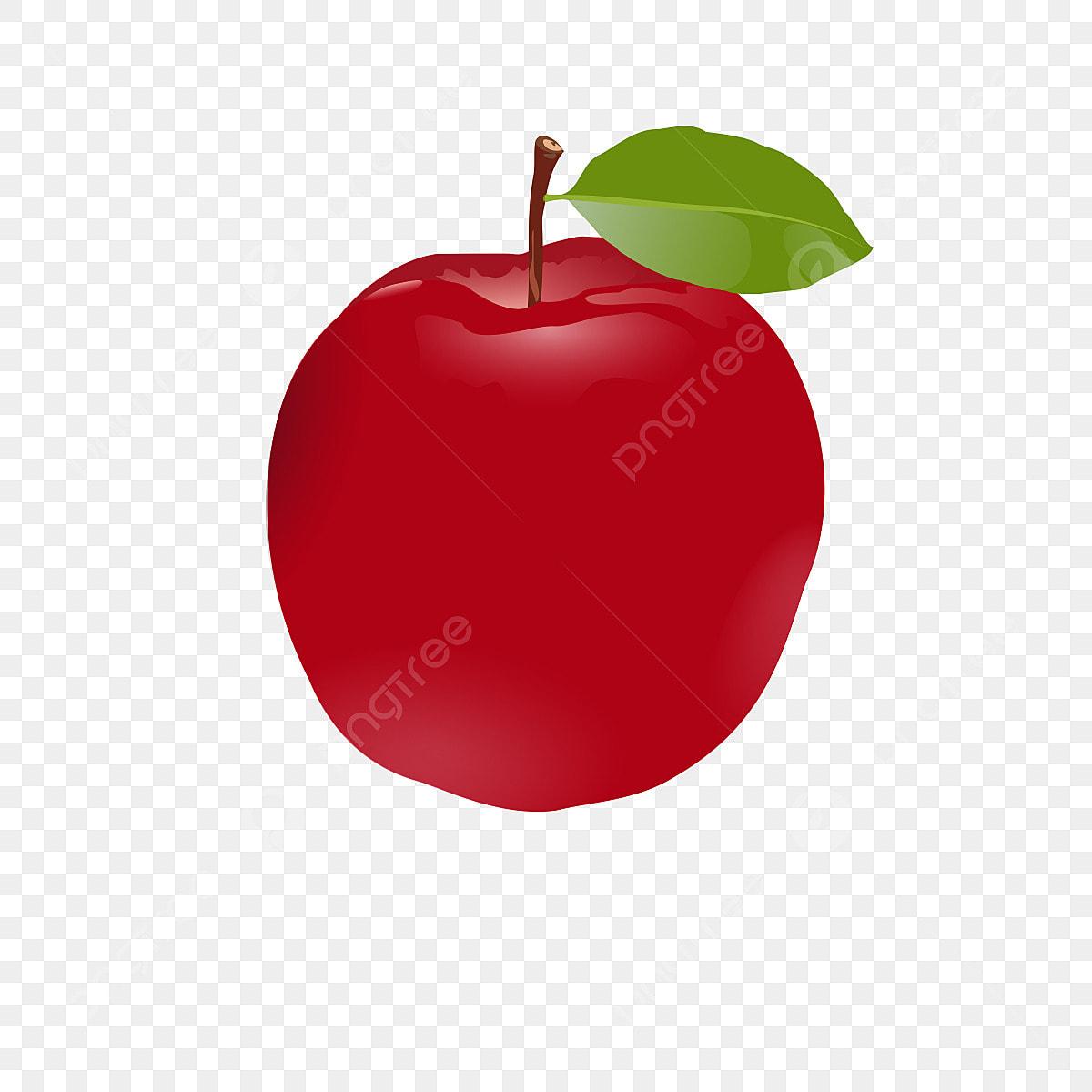 Frutas Desenho Clipart Apple Frutos Logo Clipart Clipart