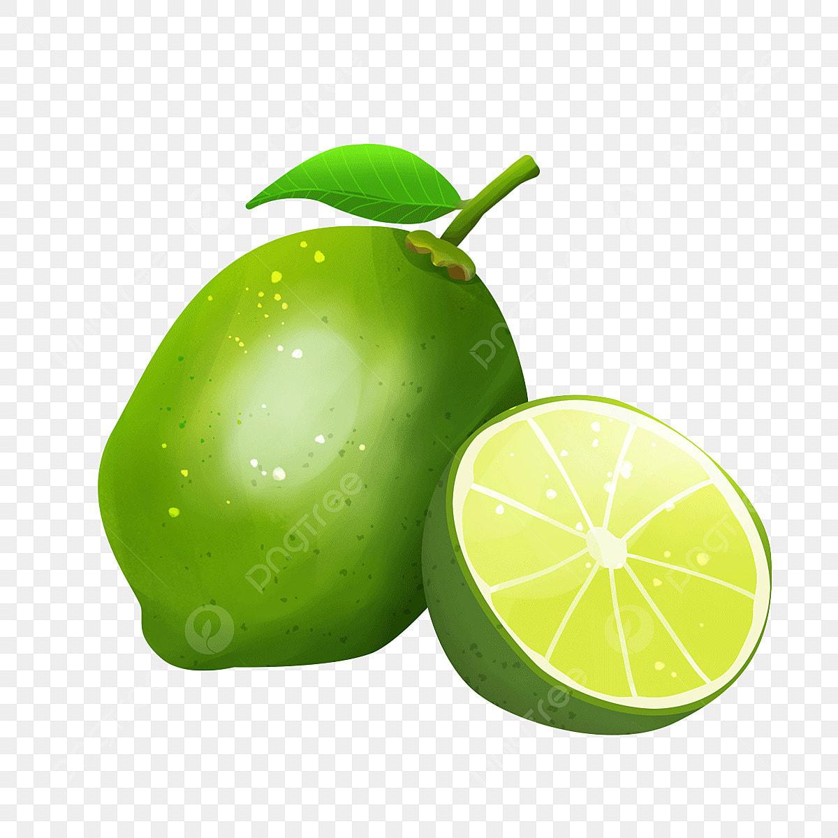 無料ダウンロードのためのレモン果実のクリップアートを描いて 果実の