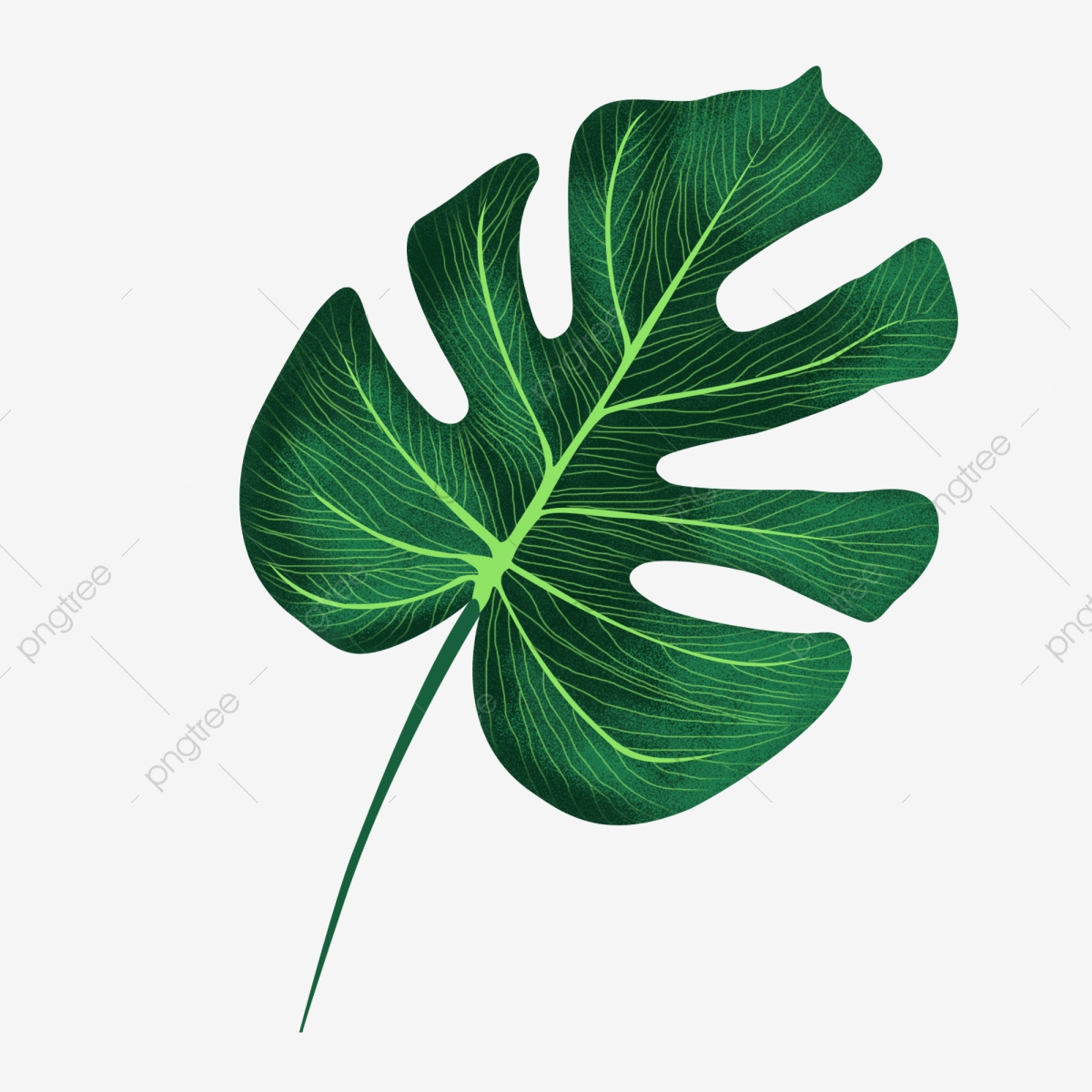 pngtree hand painted noise green leaf element monstera leaf decoration pattern with png image 4054582